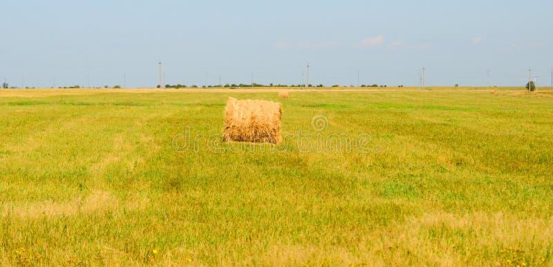 Download Heuschober Auf Einem Gebiet Stockbild - Bild von bewirtschaften, landwirtschaft: 26357905