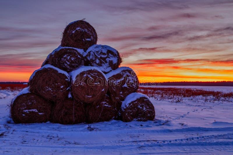 Heuschober in einer Feld gefalteten Pyramide am Sonnenuntergang und am roten gelben Himmel in der Winterpostkarten-Landschaftsans stockbilder