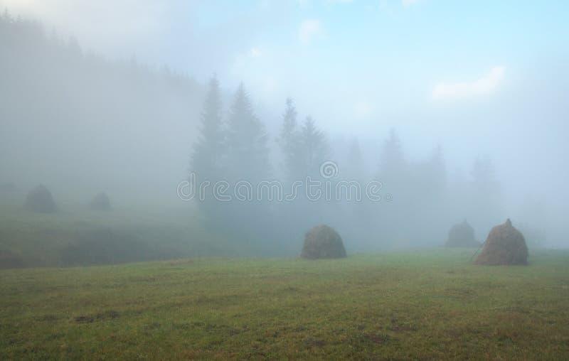 Heuschober, nebelhafter Morgen stockbild