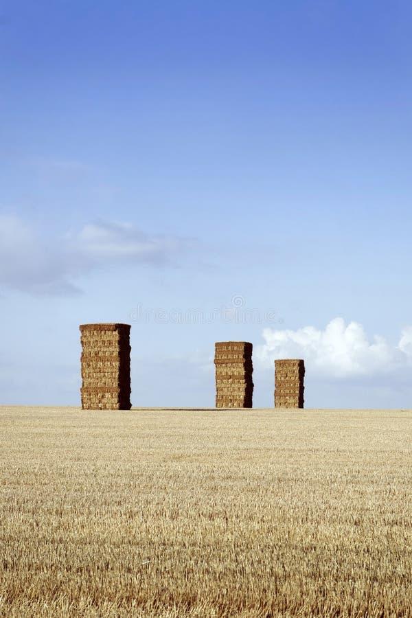 Heuschober, Norfolk Großbritannien lizenzfreie stockfotos