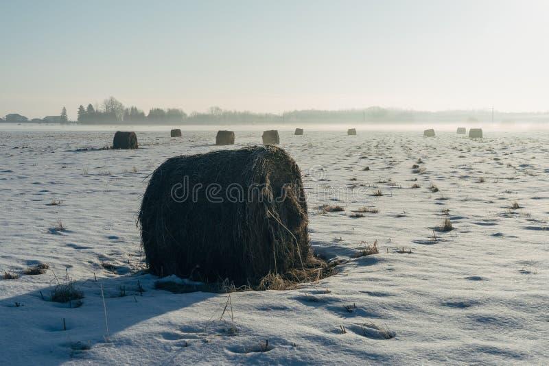 Heuschober und Ackerlandfeld bis zum Wintermorgen stockfoto