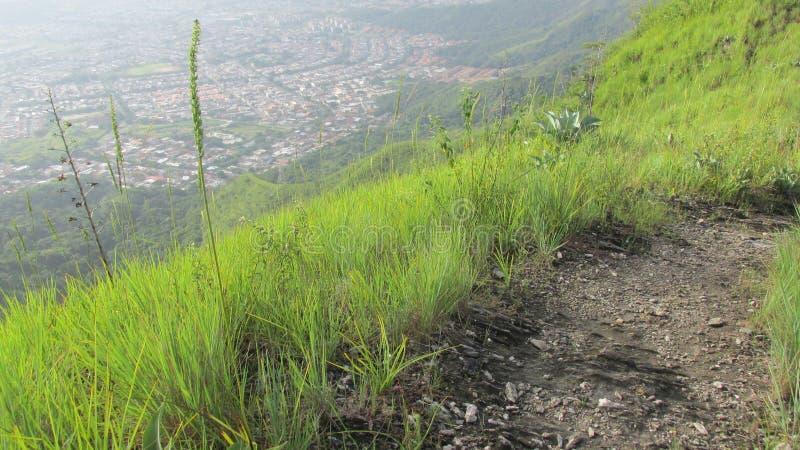 Heuvel stock afbeeldingen