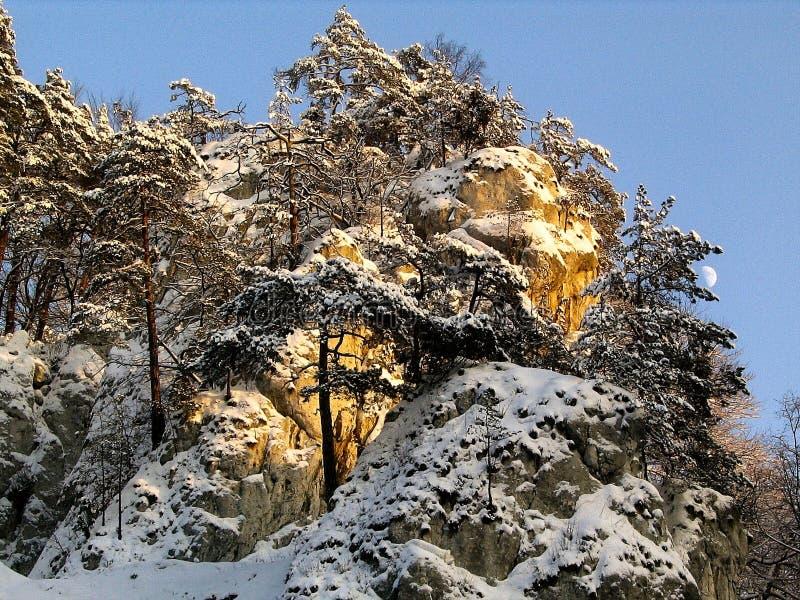 Heuvel in sneeuw wordt behandeld die royalty-vrije stock afbeelding