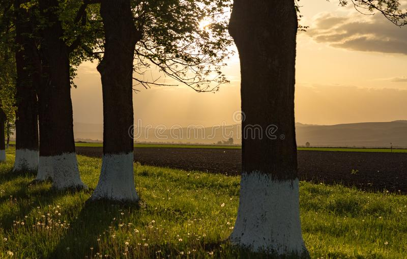 Heuvel van de vallei vóór het onweer stock foto's