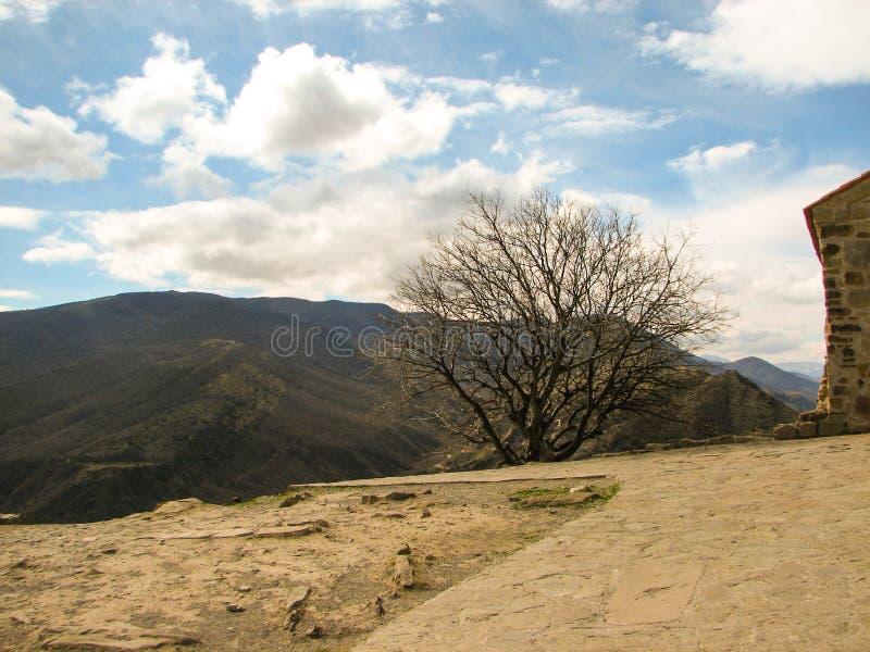 Heuvel van geel gras onder duidelijke blauwe hemel wordt behandeld die stock foto's