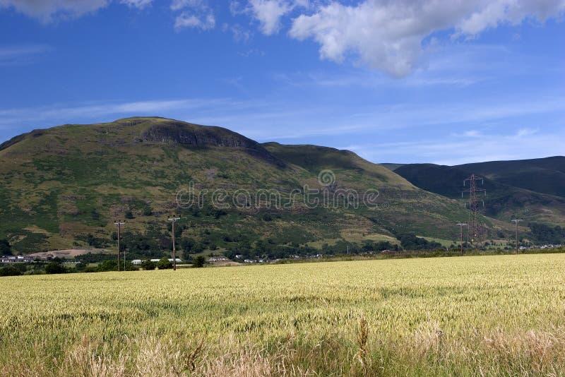 Heuvels 2 van Ochil stock afbeeldingen