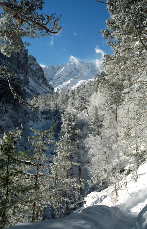 Heuvels in een de winter zonnige dag. stock afbeeldingen