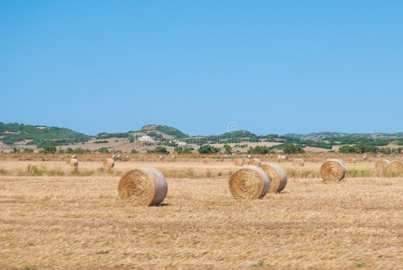 Heuvels van Toscanië met gecultiveerde gebieden met hooibalen in de voorgrond royalty-vrije stock afbeelding