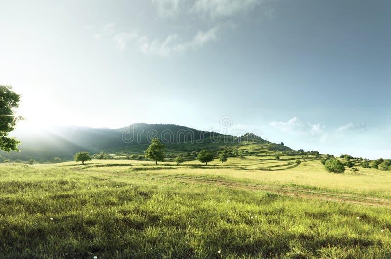 Heuvelvallei tijdens zonsondergang en een mooi groen gebied stock foto