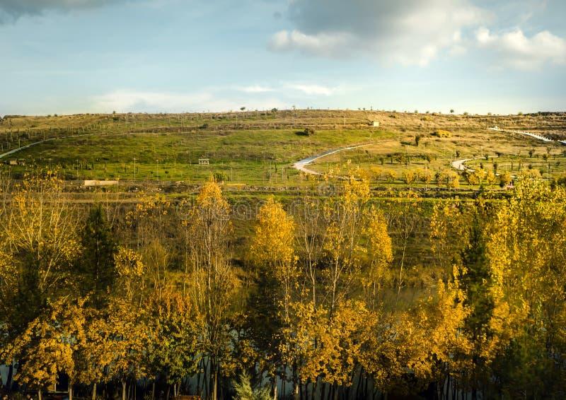 Hevsel-Gärten auf die Türkei--DiyarbakirTigrisfluß nahe zehn-äugiger Brücke lizenzfreie stockfotos
