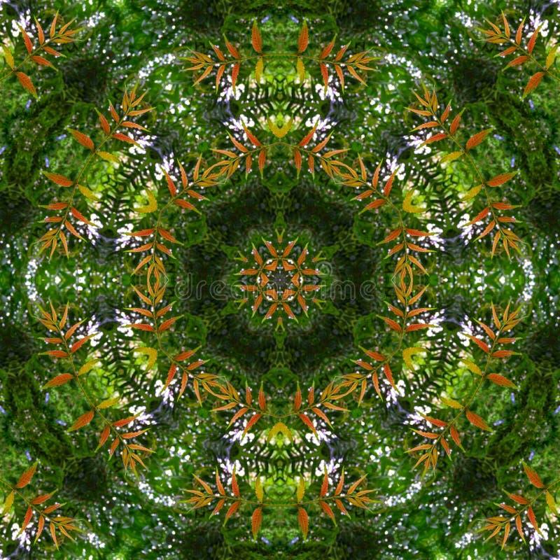 Hex Kaleidoscope Editar com Folheto Verde ilustração stock
