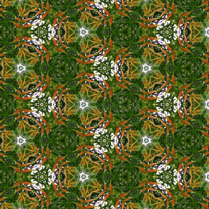 Hex Kaleidoscope Editar com Folheto Verde ilustração do vetor