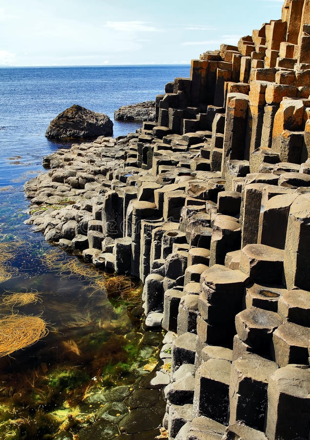 The hexagonal Basalt slabs of Giants Causeway dipping into the sea. Antrim Coastline, Northern Ireland. The Giants causeway is the most popular tourist royalty free stock photography