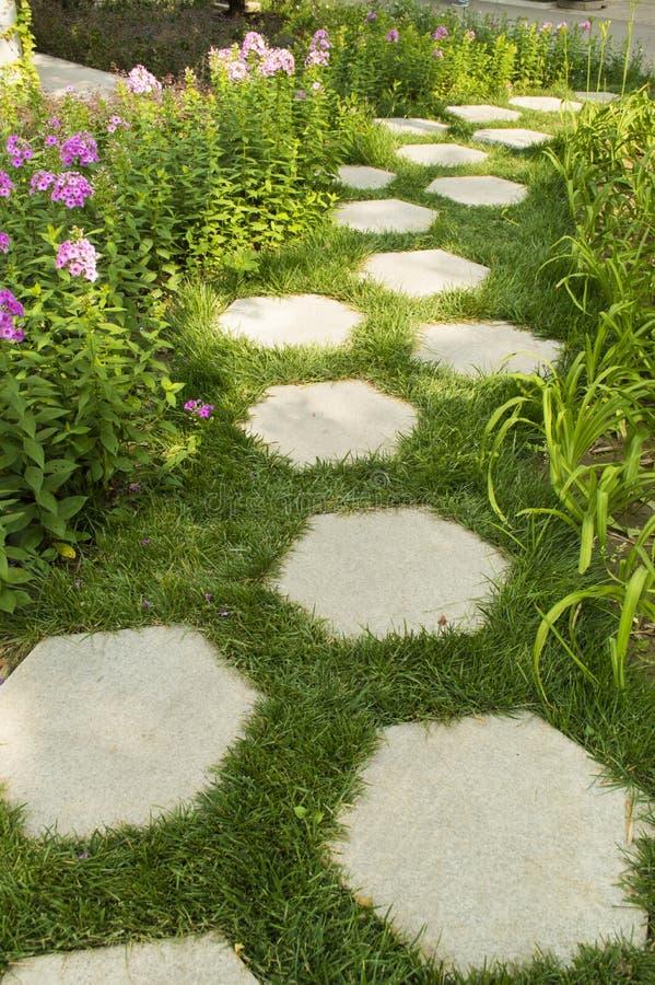 Hexagonale steenweg in de tuin stock foto's