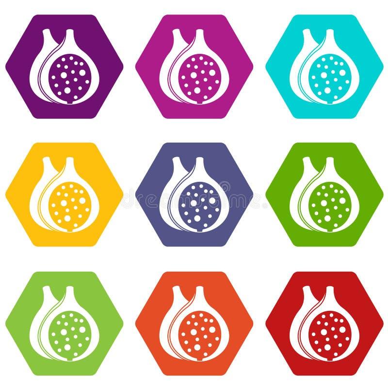 Hexahedron réglé de couleur d'icône de fruit de figue illustration libre de droits