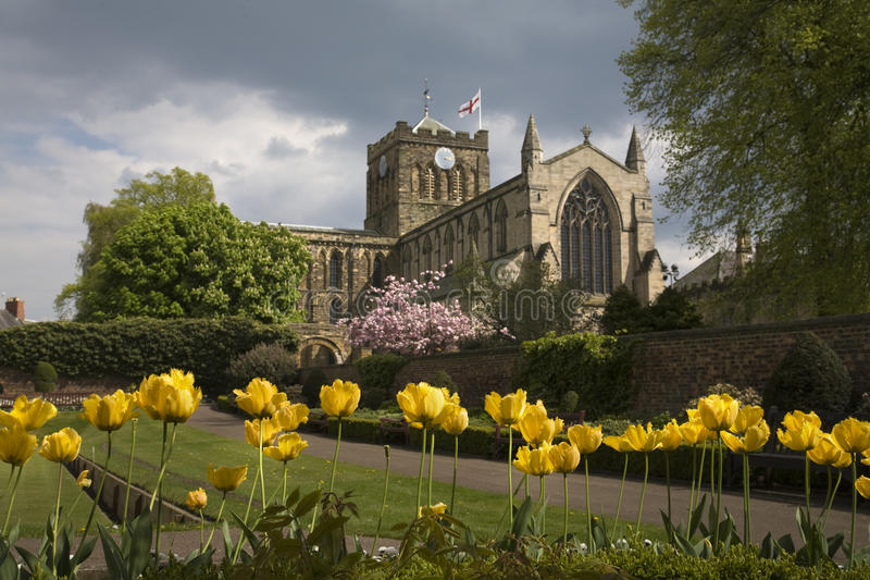 Download Hexham Abbey stock image. Image of town, tulips, worship - 14290589