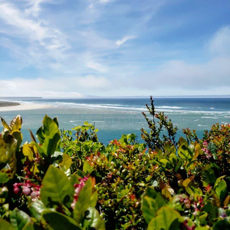 Hey you beach stock photography