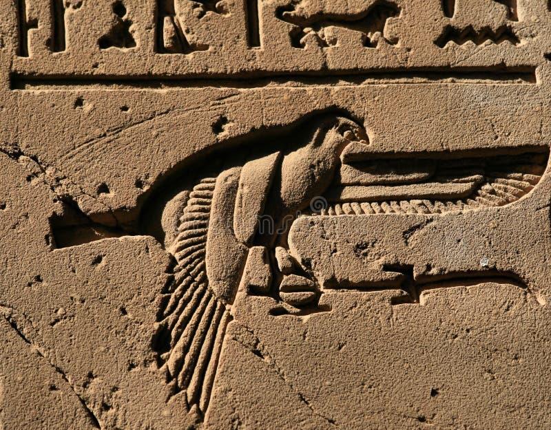 Hiéroglyphe 2 d'oiseau images stock
