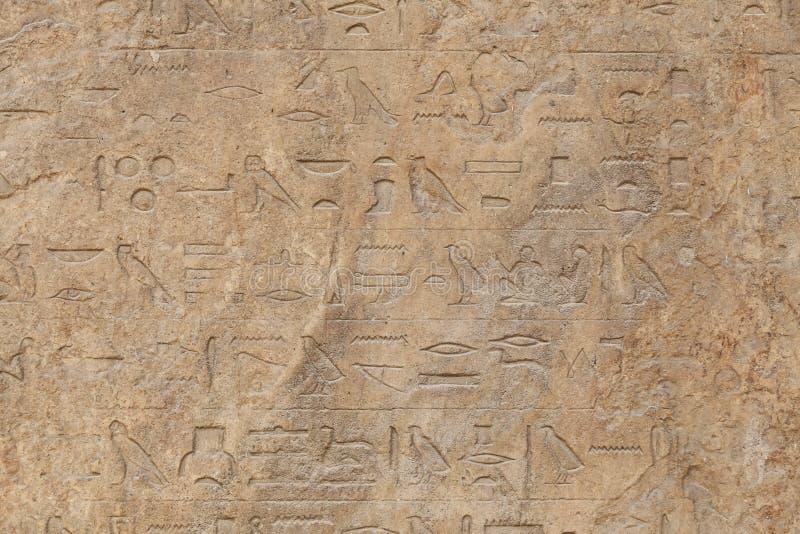 Hiéroglyphes à Memphis, le Caire, Egypte image stock