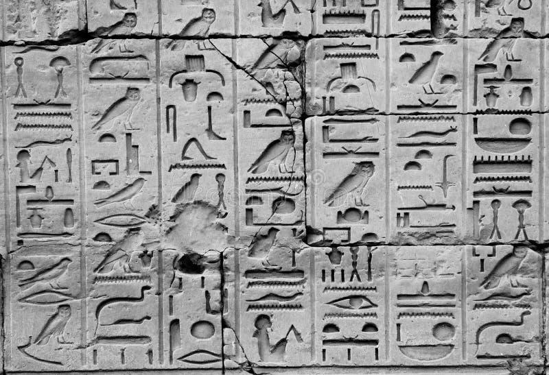 Hiéroglyphes égyptiens images libres de droits