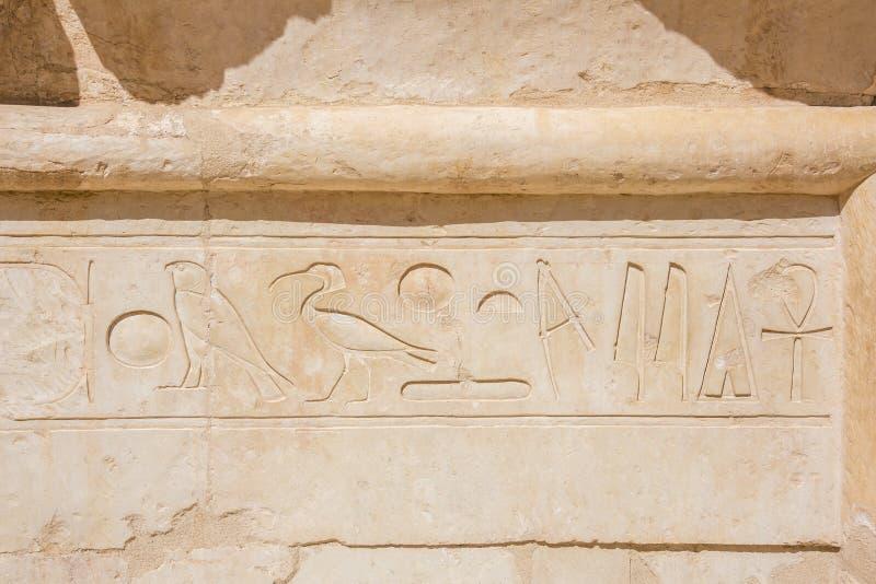 Hiërogliefen in de zoncultus complex in de Tempel van Hatshepsut stock foto