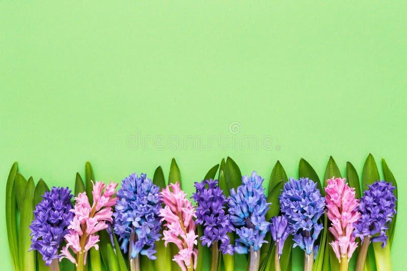 Hiacyntowa kwiat granica na zielonym tle Odgórny widok, kopii przestrzeń 2007 pozdrowienia karty szczęśliwych nowego roku zdjęcia stock