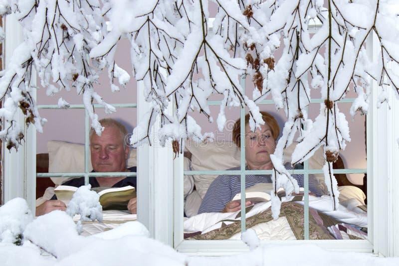 Hibernación del invierno fotos de archivo libres de regalías