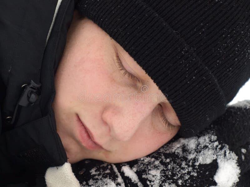 Hibernation stock images