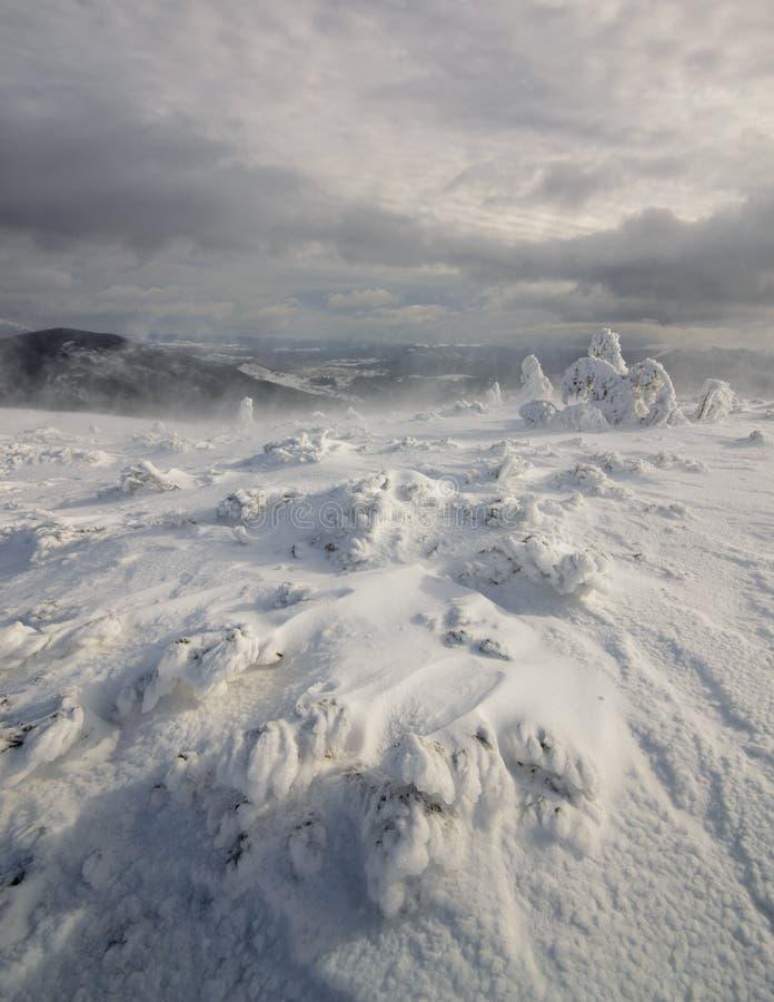 Hibernation. Carpathian, Ukraine. Fantastic winter landscape. Carpathian, Ukraine. Beauty world royalty free stock photo