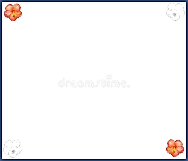 Hibisco - frontera ilustración del vector