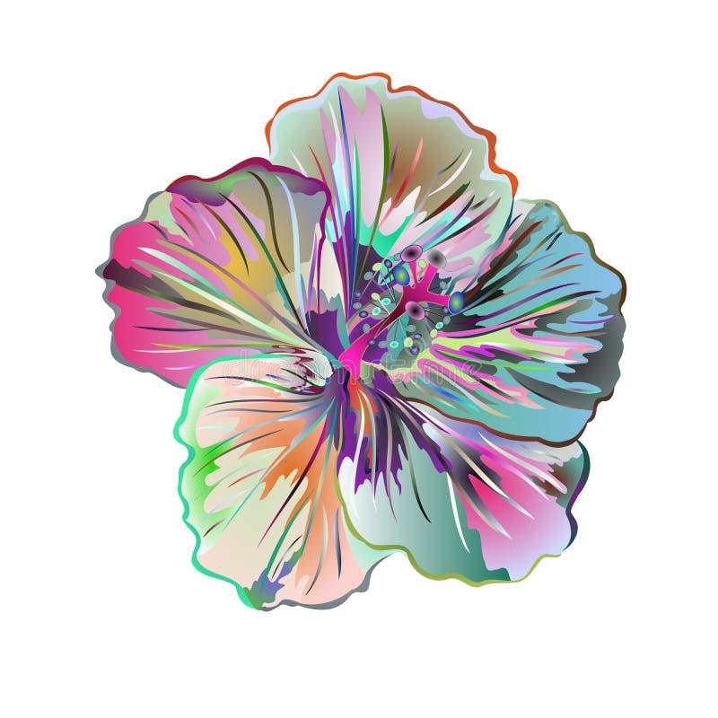 Hibisco mucho flor tropical simple de la acuarela colorida en un vector blanco del vintage del fondo stock de ilustración