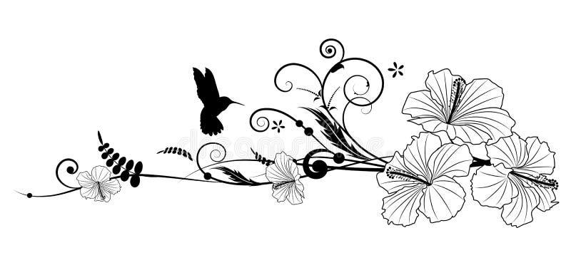 Hibisco y colibrí stock de ilustración