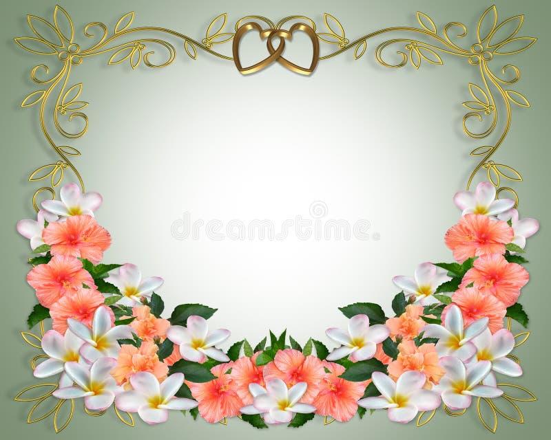 hibiscus γάμος plumeria πρόσκλησης ελεύθερη απεικόνιση δικαιώματος