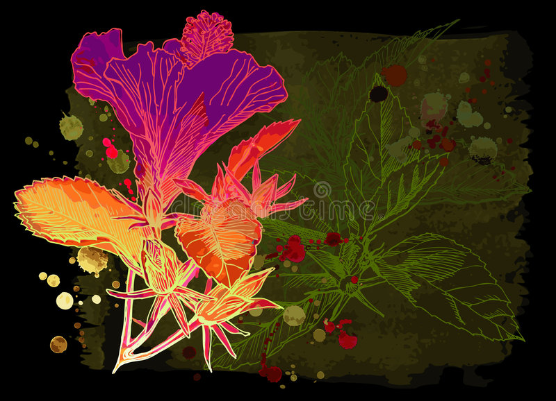 hibiscus λουλουδιών watercolor ελεύθερη απεικόνιση δικαιώματος