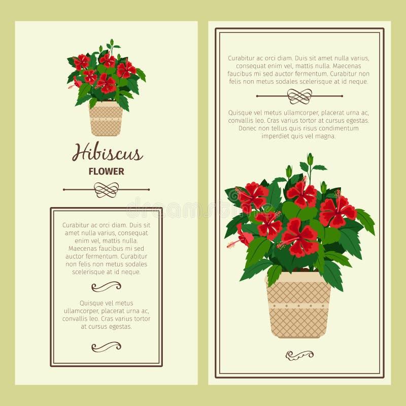 Hibiscus λουλούδι στα εμβλήματα δοχείων ελεύθερη απεικόνιση δικαιώματος