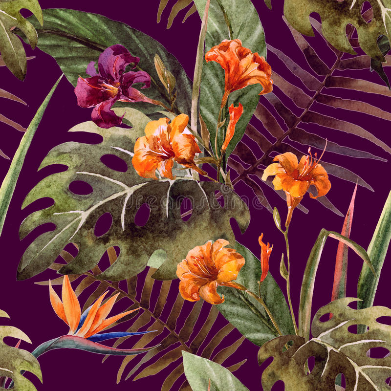 Hibiscus ορχιδεών σχεδίων τροπικοί κύκλοι watercolor φύλλων απεικόνιση αποθεμάτων