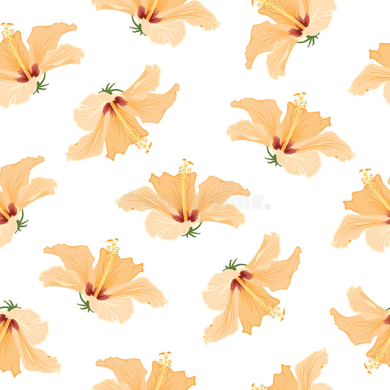 Free Hibiscus Bright Yellow Tropical Flowers Pattern Stock Photo - 89938330