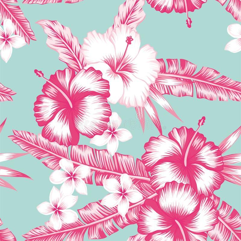 Hibiscus e folhas ilustração stock