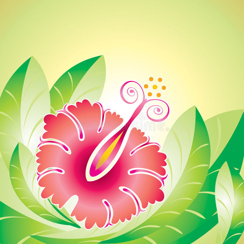 Hibiscus flower. Vector file of Hibiscus flower and leaf design vector illustration