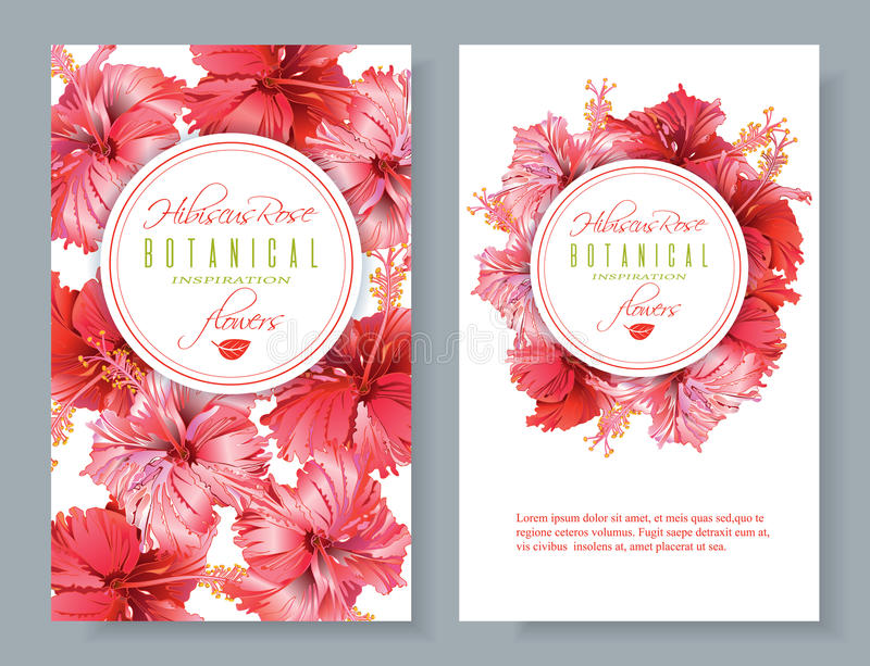 Hibiscus flower banners. Vector red tea vertical banners with hibiscus flowers on white background. Botanic frame. Design for packaging, tea shop. Can be used as royalty free illustration