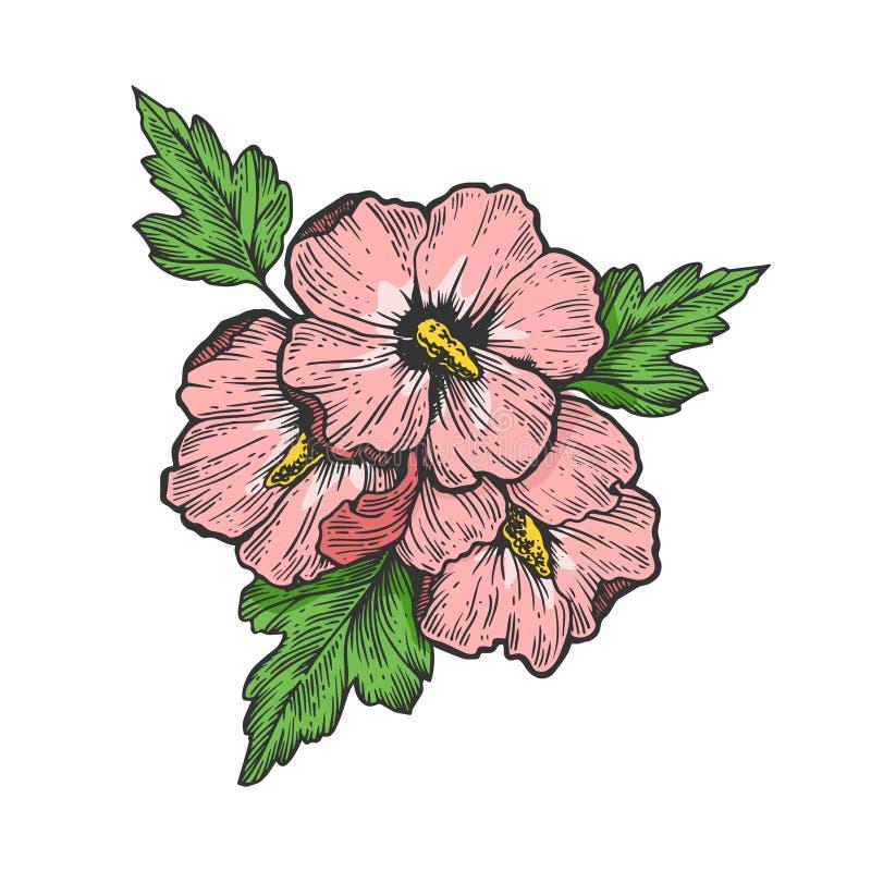 Hibiscus flower engraving vector illustration stock illustration