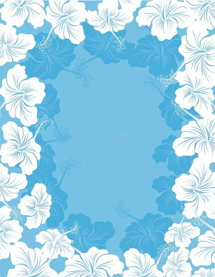 Hibiscus flower frame vector illustration