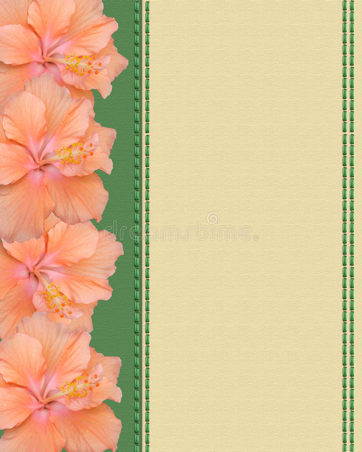 Hibiscus flowers on canvas background stock illustration