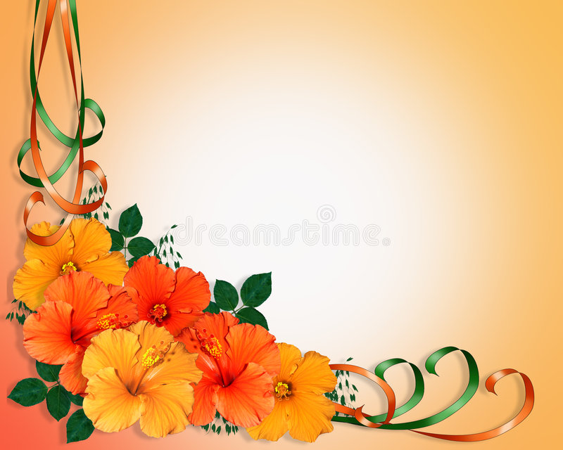 Hibiscus Flowers and Ribbons stock illustration