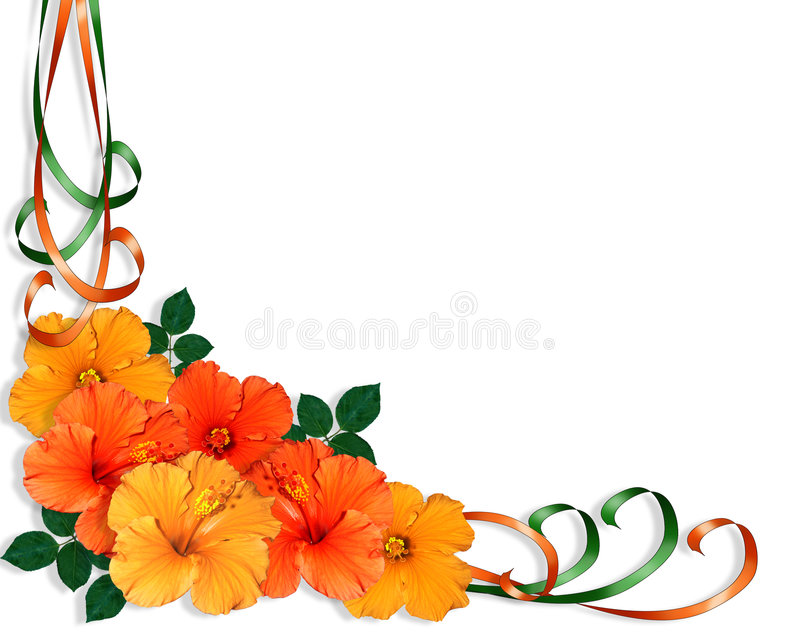 Hibiscus Flowers and Ribbons vector illustration