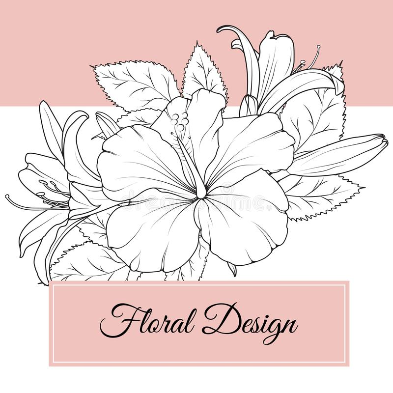 Hibiscus lily flowers floral design card template royalty free illustration