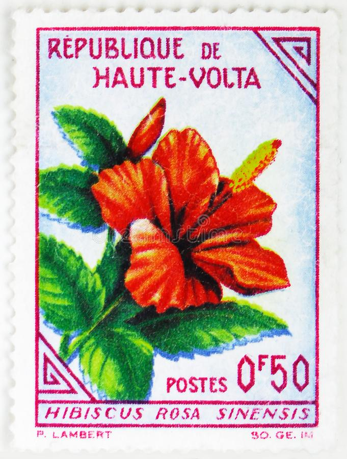 Hibiscus rosa-sinensis, Definitives serie, circa 1963. MOSCOW, RUSSIA - JULY 25, 2019: Postage stamp printed in Republic of Upper Volta ( Burkina Faso) shows royalty free stock photo