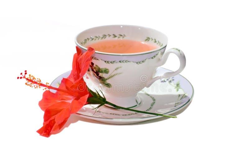 Download Hibiscus tea stock photo. Image of background, alternative - 16290480