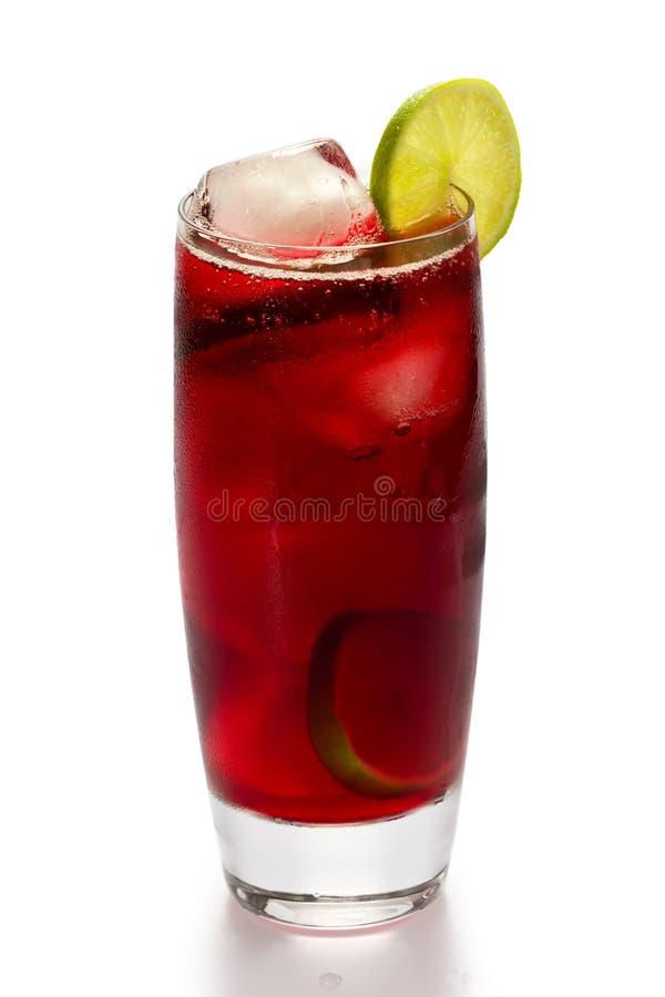 Hibiscus Tea stock image