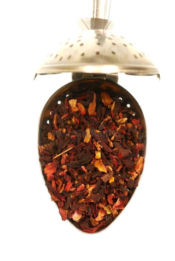 Download Hibiscus Tea stock image. Image of flower, strain, teaspoon - 7294767